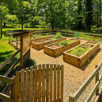 Strawberry Hill garden area