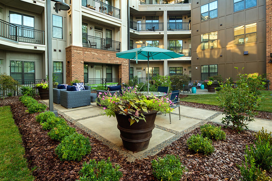 The Lexington Dilworth - Apartments in Charlotte, NC